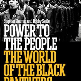 Power to the People – Black Panthers